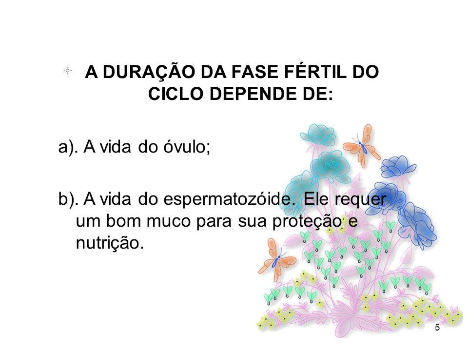 5 A DURAÇÃO DA FASE FÉRTIL DO CICLO DEPENDE DE: a). A vida do óvulo; b). A vida do espermatozóide. Ele requer um bom muco para sua proteção e nutrição