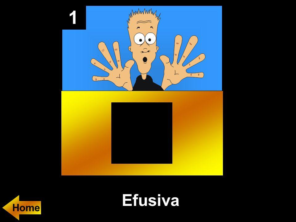 1 Efusiva Home