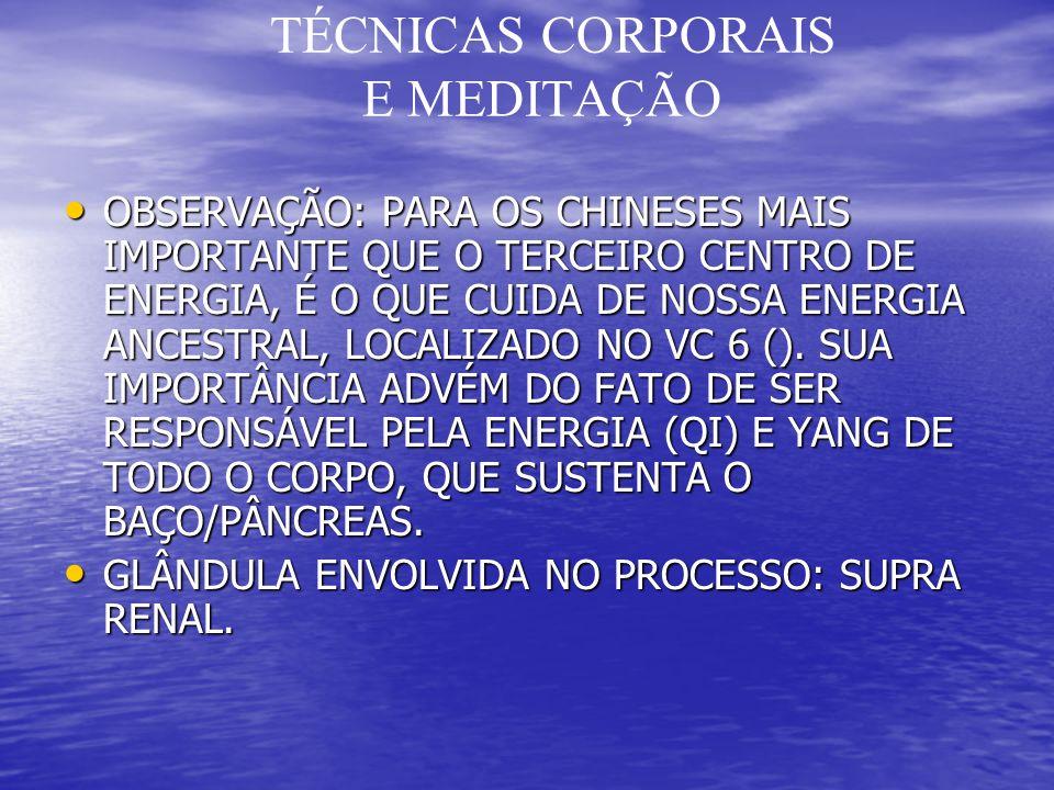 TÉCNICAS CORPORAIS E MEDITAÇÃO OBSERVAÇÃO: PARA OS CHINESES MAIS IMPORTANTE QUE O TERCEIRO CENTRO DE ENERGIA, É O QUE CUIDA DE NOSSA ENERGIA ANCESTRAL, LOCALIZADO NO VC 6 ().