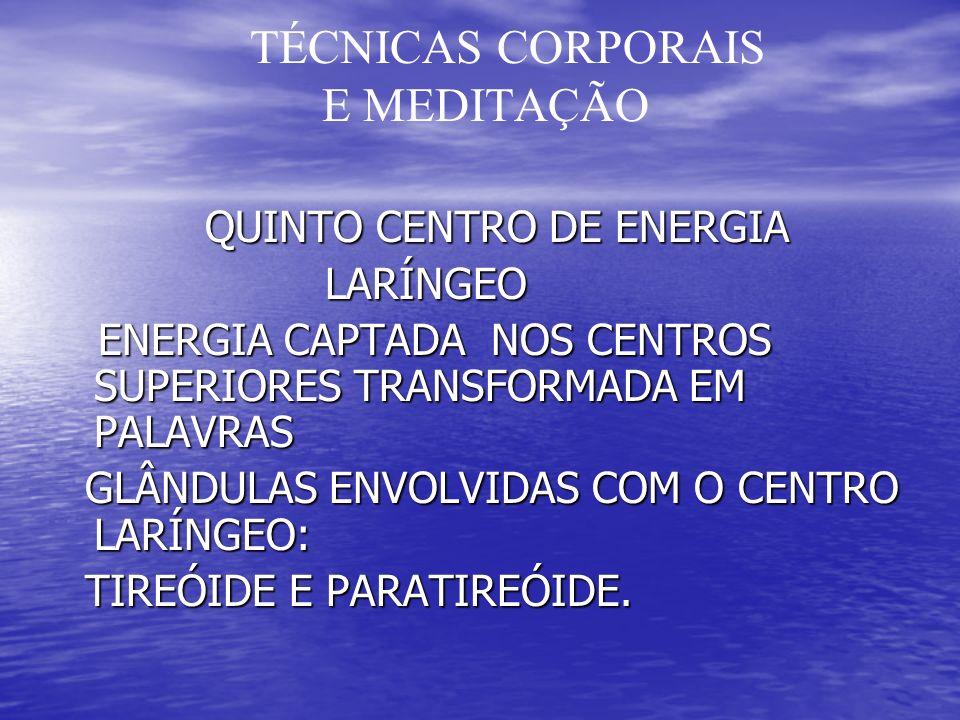 TÉCNICAS CORPORAIS E MEDITAÇÃO QUINTO CENTRO DE ENERGIA QUINTO CENTRO DE ENERGIA LARÍNGEO LARÍNGEO ENERGIA CAPTADA NOS CENTROS SUPERIORES TRANSFORMADA EM PALAVRAS ENERGIA CAPTADA NOS CENTROS SUPERIORES TRANSFORMADA EM PALAVRAS GLÂNDULAS ENVOLVIDAS COM O CENTRO LARÍNGEO: GLÂNDULAS ENVOLVIDAS COM O CENTRO LARÍNGEO: TIREÓIDE E PARATIREÓIDE.
