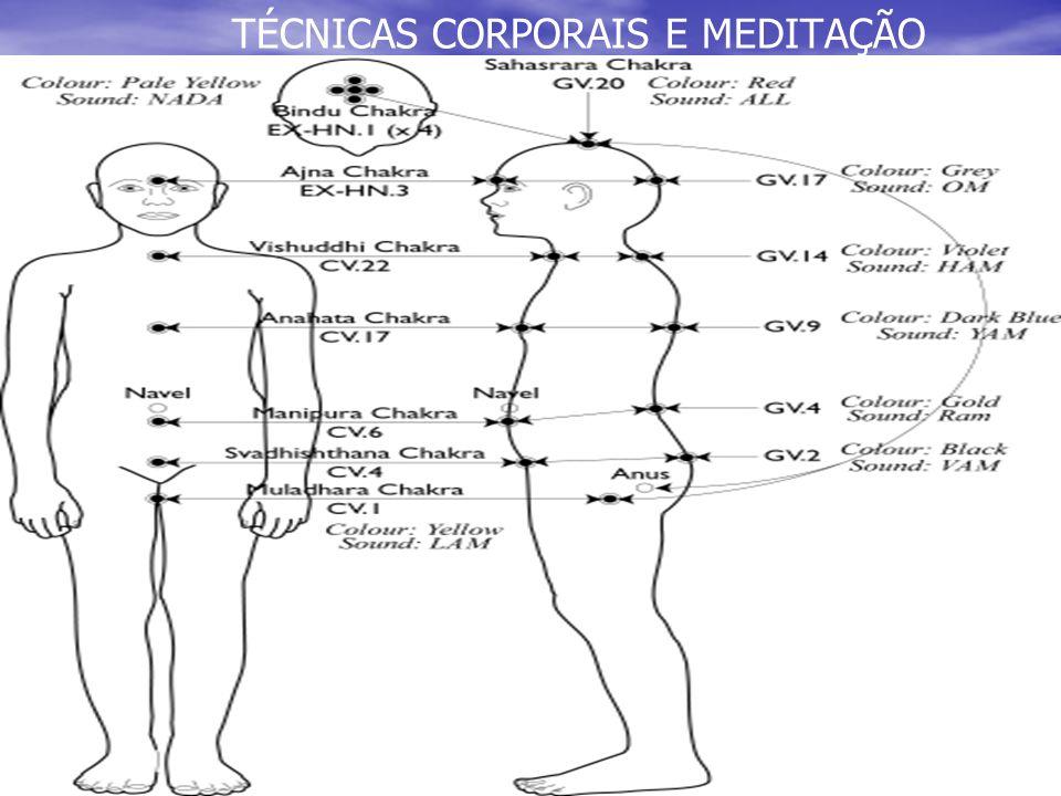 TÉCNICAS CORPORAIS E MEDITAÇÃO QUARTO CENTRO QUARTO CENTRO CARDÍACO CARDÍACO LIGADO A COMPAIXÃO E EMOÇÕES AMOROSAS (ENTRE AMANTES, FAMILIARES E AMOR PRÓPRIO).