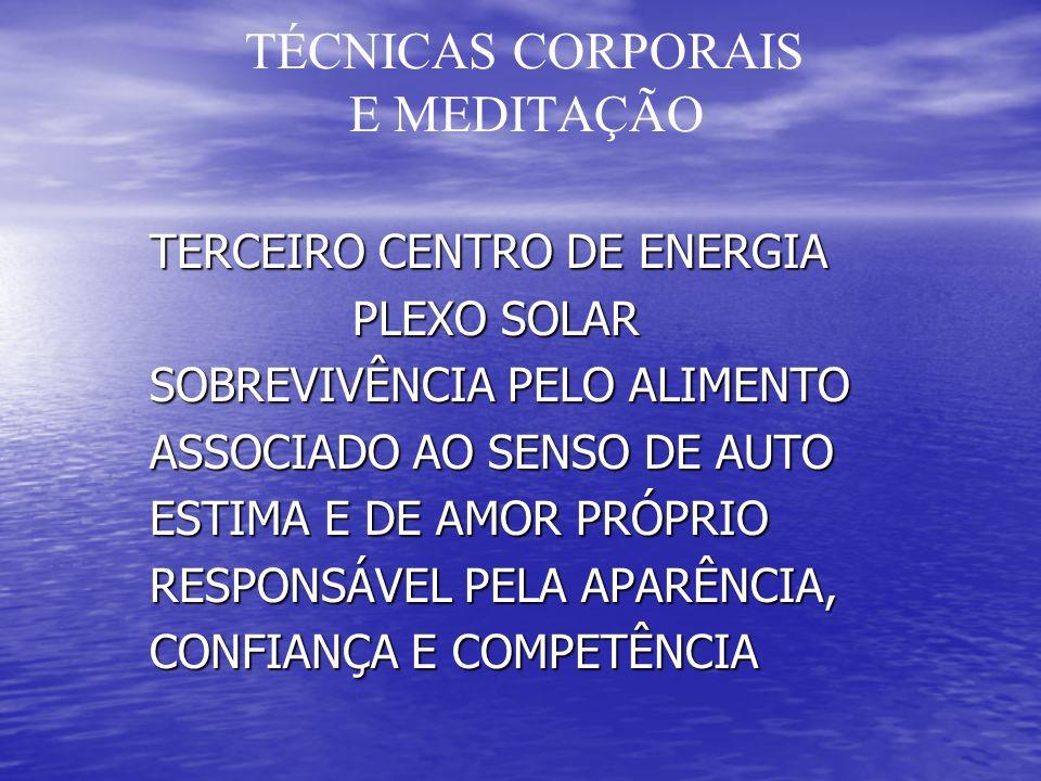 TÉCNICAS CORPORAIS E MEDITAÇÃO TERCEIRO CENTRO DE ENERGIA TERCEIRO CENTRO DE ENERGIA PLEXO SOLAR PLEXO SOLAR SOBREVIVÊNCIA PELO ALIMENTO SOBREVIVÊNCIA PELO ALIMENTO ASSOCIADO AO SENSO DE AUTO ASSOCIADO AO SENSO DE AUTO ESTIMA E DE AMOR PRÓPRIO ESTIMA E DE AMOR PRÓPRIO RESPONSÁVEL PELA APARÊNCIA, RESPONSÁVEL PELA APARÊNCIA, CONFIANÇA E COMPETÊNCIA CONFIANÇA E COMPETÊNCIA