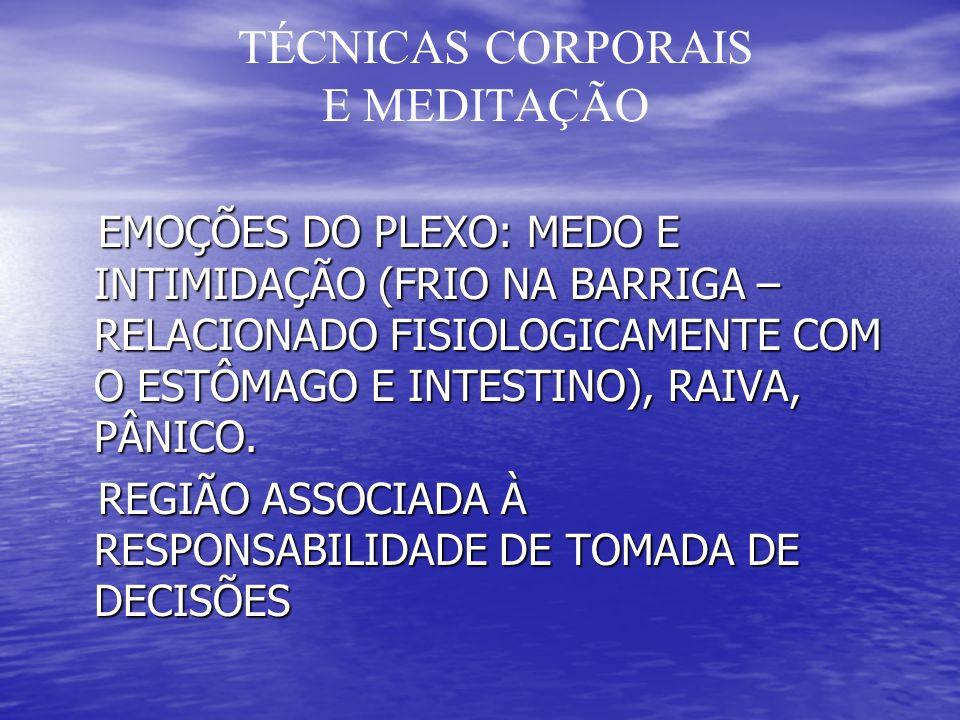 TÉCNICAS CORPORAIS E MEDITAÇÃO EMOÇÕES DO PLEXO: MEDO E INTIMIDAÇÃO (FRIO NA BARRIGA – RELACIONADO FISIOLOGICAMENTE COM O ESTÔMAGO E INTESTINO), RAIVA, PÂNICO.