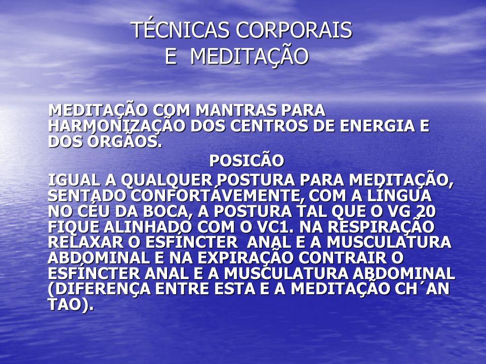 TÉCNICAS CORPORAIS E MEDITAÇÃO TÉCNICAS CORPORAIS E MEDITAÇÃO MEDITAÇÃO COM MANTRAS PARA HARMONIZAÇÃO DOS CENTROS DE ENERGIA E DOS ÓRGÃOS. MEDITAÇÃO C