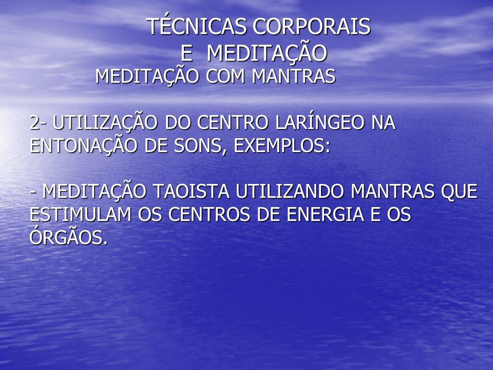 TÉCNICAS CORPORAIS E MEDITAÇÃO TÉCNICAS CORPORAIS E MEDITAÇÃO MEDITAÇÃO COM MANTRAS MEDITAÇÃO COM MANTRAS 2- UTILIZAÇÃO DO CENTRO LARÍNGEO NA 2- UTILI