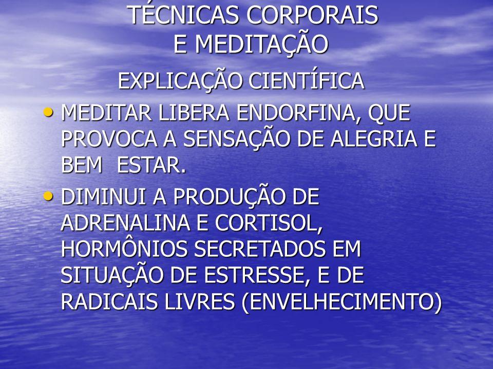 TÉCNICAS CORPORAIS E MEDITAÇÃO TÉCNICAS CORPORAIS E MEDITAÇÃO EXPLICAÇÃO CIENTÍFICA EXPLICAÇÃO CIENTÍFICA MEDITAR LIBERA ENDORFINA, QUE PROVOCA A SENS