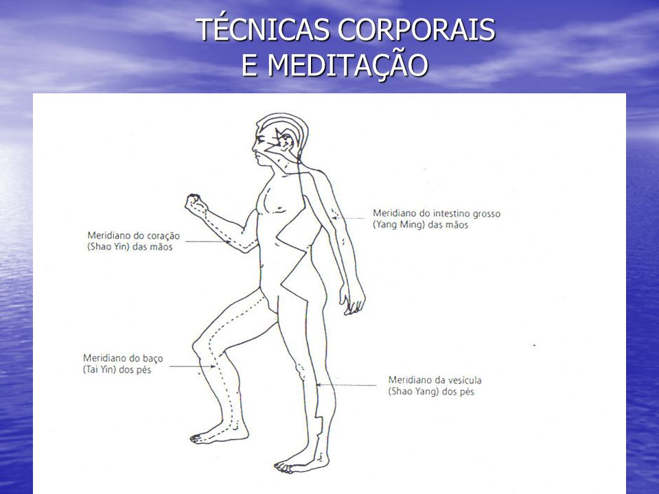 TÉCNICAS CORPORAIS E MEDITAÇÃO TÉCNICAS CORPORAIS E MEDITAÇÃO QUAL MEDITAÇÃO .