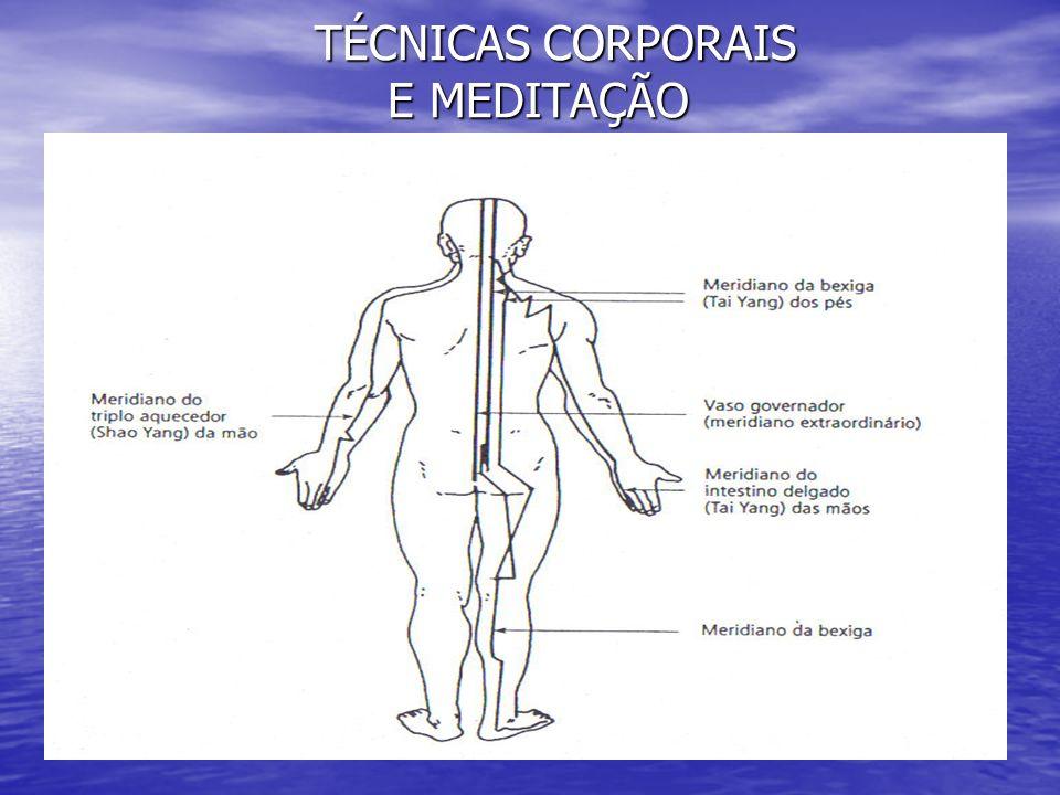2- A ALIMENTAÇÃO, EXERCÍCIOS E OS PENSAMENTOS INTERFEREM NA ENERGIA (Qi) DO CORPO .