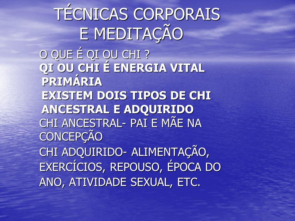 TÉCNICAS CORPORAIS E MEDITAÇÃO TÉCNICAS CORPORAIS E MEDITAÇÃO O QUE É QI OU CHI .