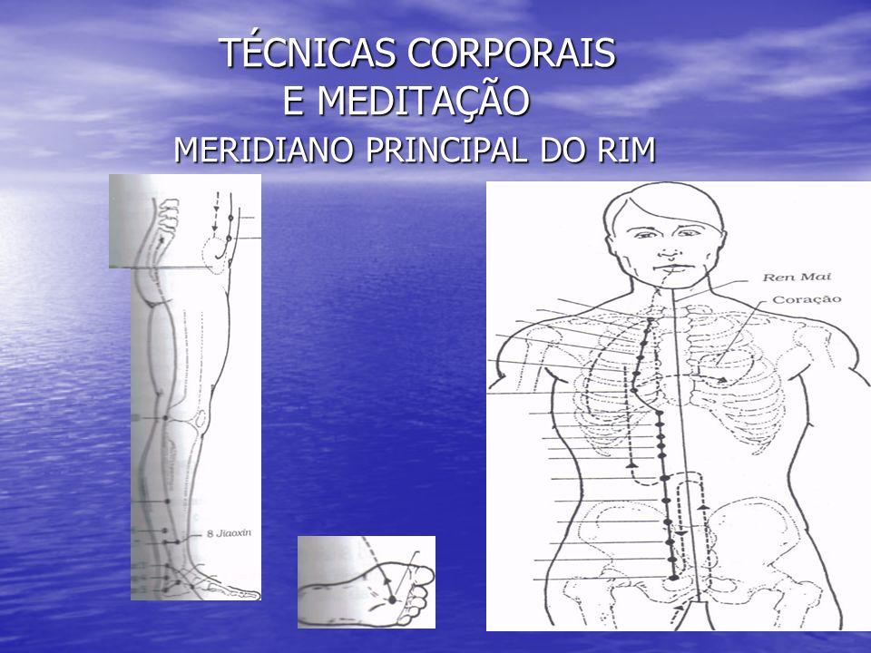 TÉCNICAS CORPORAIS E MEDITAÇÃO MERIDIANO PRINCIPAL DO RIM TÉCNICAS CORPORAIS E MEDITAÇÃO MERIDIANO PRINCIPAL DO RIM