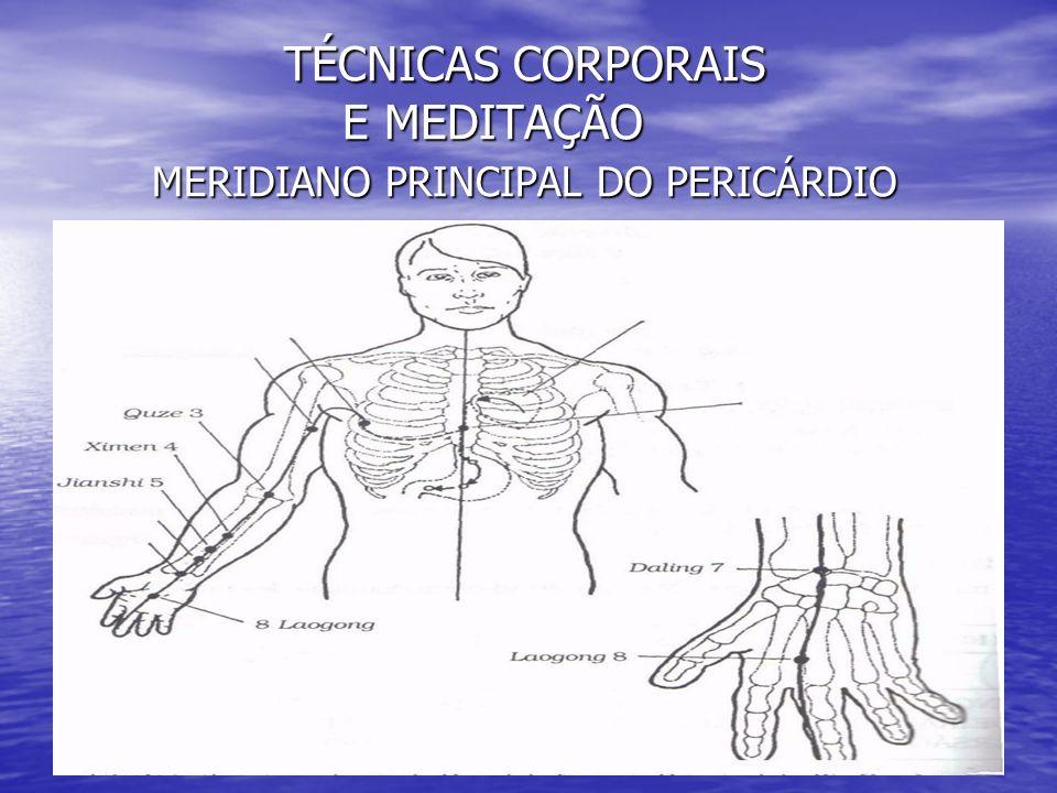 TÉCNICAS CORPORAIS E MEDITAÇÃO MERIDIANO PRINCIPAL DO PERICÁRDIO TÉCNICAS CORPORAIS E MEDITAÇÃO MERIDIANO PRINCIPAL DO PERICÁRDIO