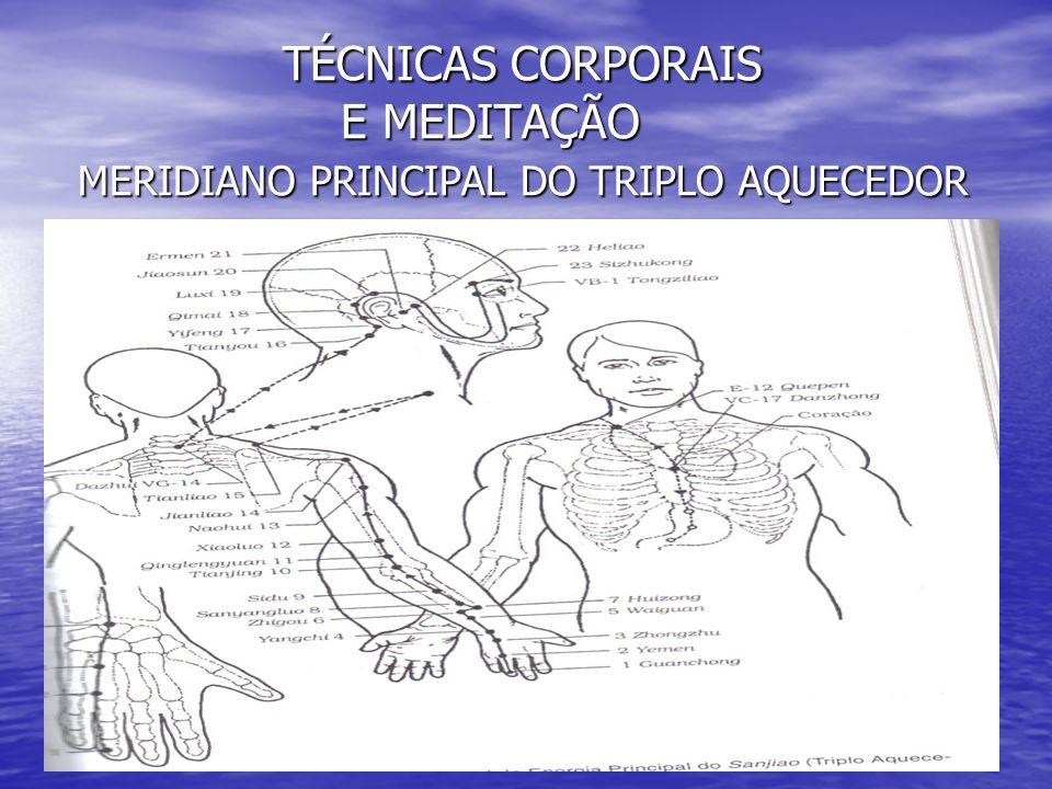 TÉCNICAS CORPORAIS E MEDITAÇÃO MERIDIANO PRINCIPAL DO TRIPLO AQUECEDOR TÉCNICAS CORPORAIS E MEDITAÇÃO MERIDIANO PRINCIPAL DO TRIPLO AQUECEDOR