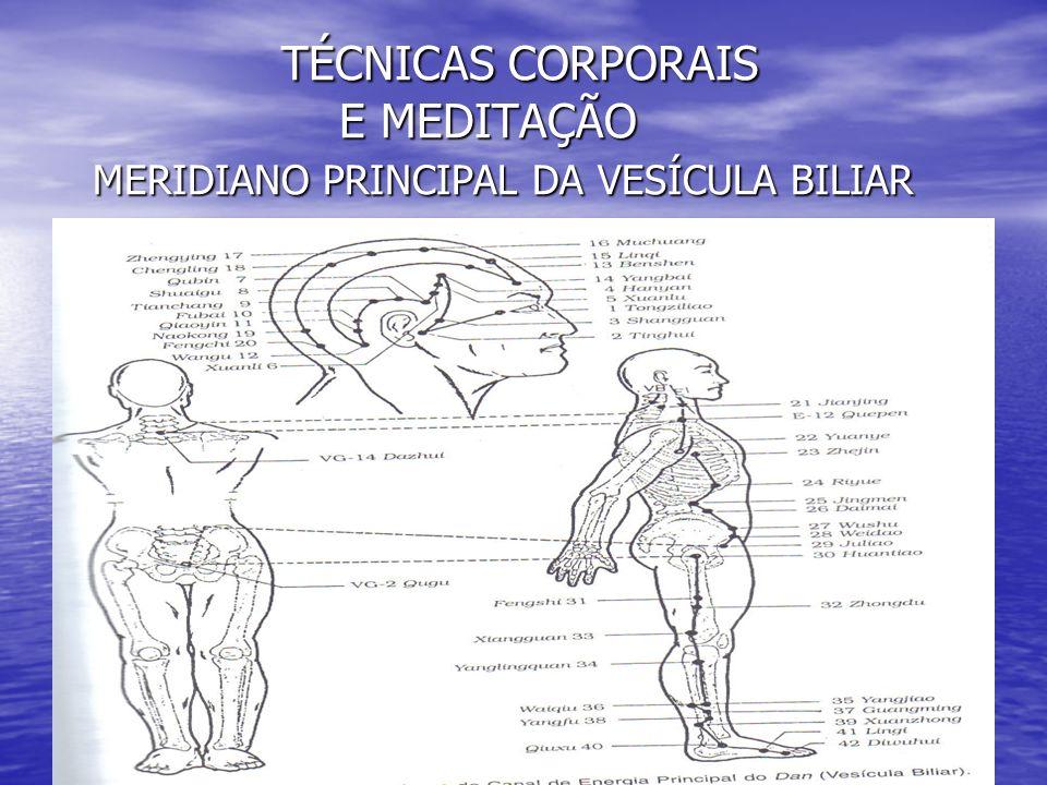 TÉCNICAS CORPORAIS E MEDITAÇÃO MERIDIANO PRINCIPAL DA VESÍCULA BILIAR TÉCNICAS CORPORAIS E MEDITAÇÃO MERIDIANO PRINCIPAL DA VESÍCULA BILIAR