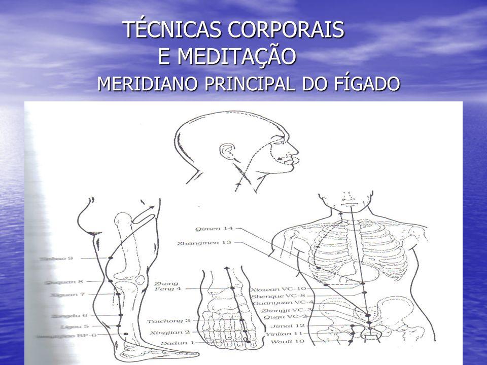 TÉCNICAS CORPORAIS E MEDITAÇÃO MERIDIANO PRINCIPAL DO FÍGADO TÉCNICAS CORPORAIS E MEDITAÇÃO MERIDIANO PRINCIPAL DO FÍGADO
