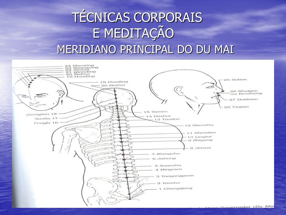 TÉCNICAS CORPORAIS E MEDITAÇÃO MERIDIANO PRINCIPAL DO DU MAI TÉCNICAS CORPORAIS E MEDITAÇÃO MERIDIANO PRINCIPAL DO DU MAI