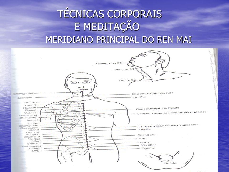 TÉCNICAS CORPORAIS E MEDITAÇÃO MERIDIANO PRINCIPAL DO REN MAI TÉCNICAS CORPORAIS E MEDITAÇÃO MERIDIANO PRINCIPAL DO REN MAI