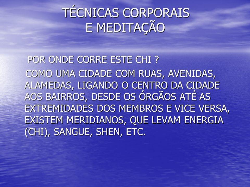 TÉCNICAS CORPORAIS E MEDITAÇÃO TÉCNICAS CORPORAIS E MEDITAÇÃO POR ONDE CORRE ESTE CHI .