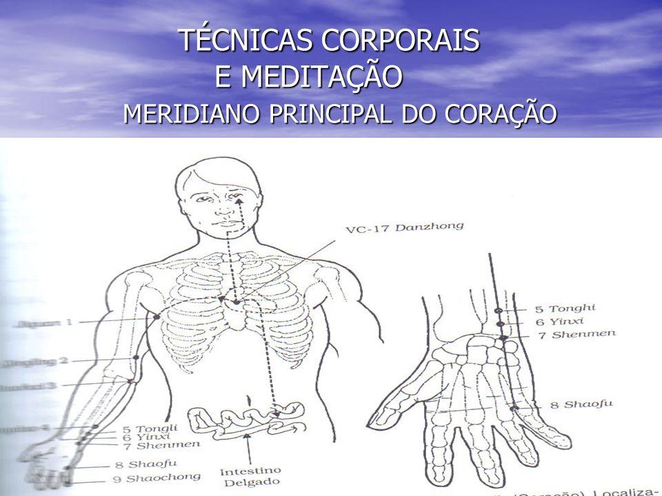 TÉCNICAS CORPORAIS E MEDITAÇÃO MERIDIANO PRINCIPAL DO CORAÇÃO TÉCNICAS CORPORAIS E MEDITAÇÃO MERIDIANO PRINCIPAL DO CORAÇÃO