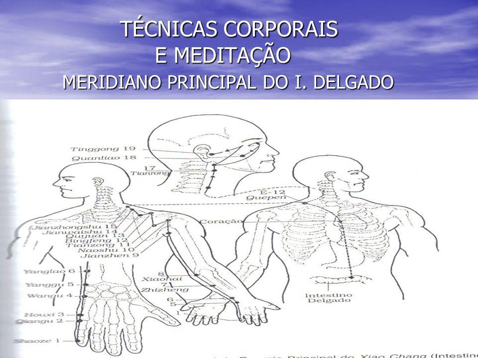 TÉCNICAS CORPORAIS E MEDITAÇÃO MERIDIANO PRINCIPAL DO I.