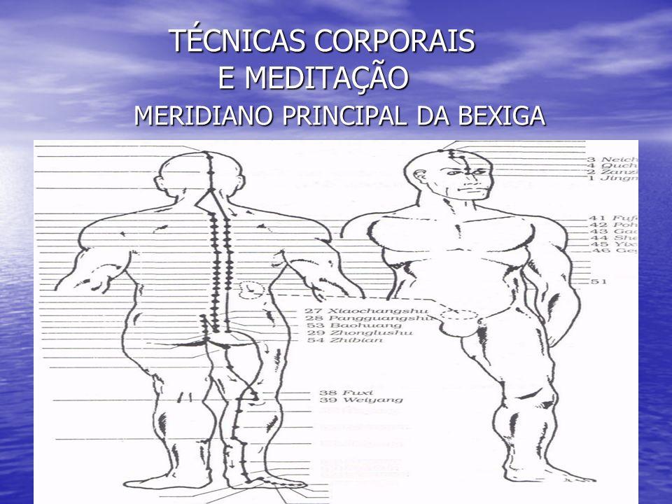 TÉCNICAS CORPORAIS E MEDITAÇÃO MERIDIANO PRINCIPAL DA BEXIGA TÉCNICAS CORPORAIS E MEDITAÇÃO MERIDIANO PRINCIPAL DA BEXIGA