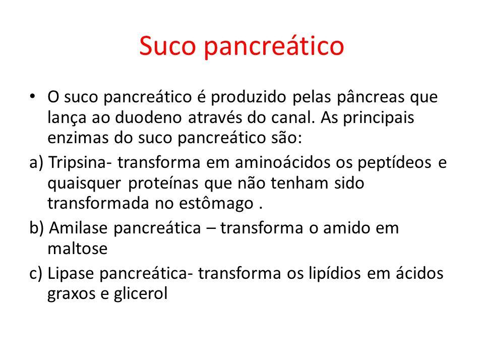 Suco pancreático O suco pancreático é produzido pelas pâncreas que lança ao duodeno através do canal. As principais enzimas do suco pancreático são: a