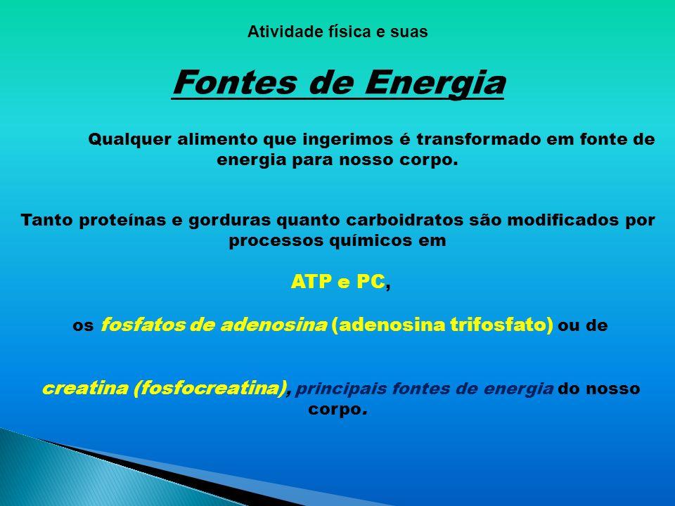 Conteúdo do 1º bimestre 3º ano Ensino médio FONTES DE ENERGIA Professor Cristofer A. Masetti CREF – 000009-G/GO