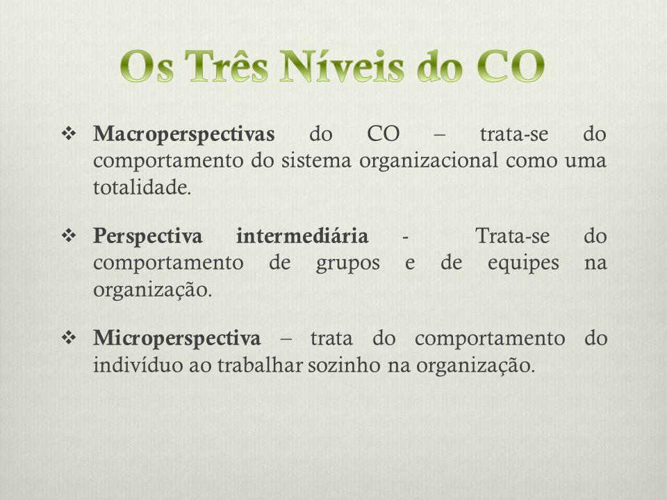 Macroperspectivas do CO – trata-se do comportamento do sistema organizacional como uma totalidade. Perspectiva intermediária - Trata-se do comportamen