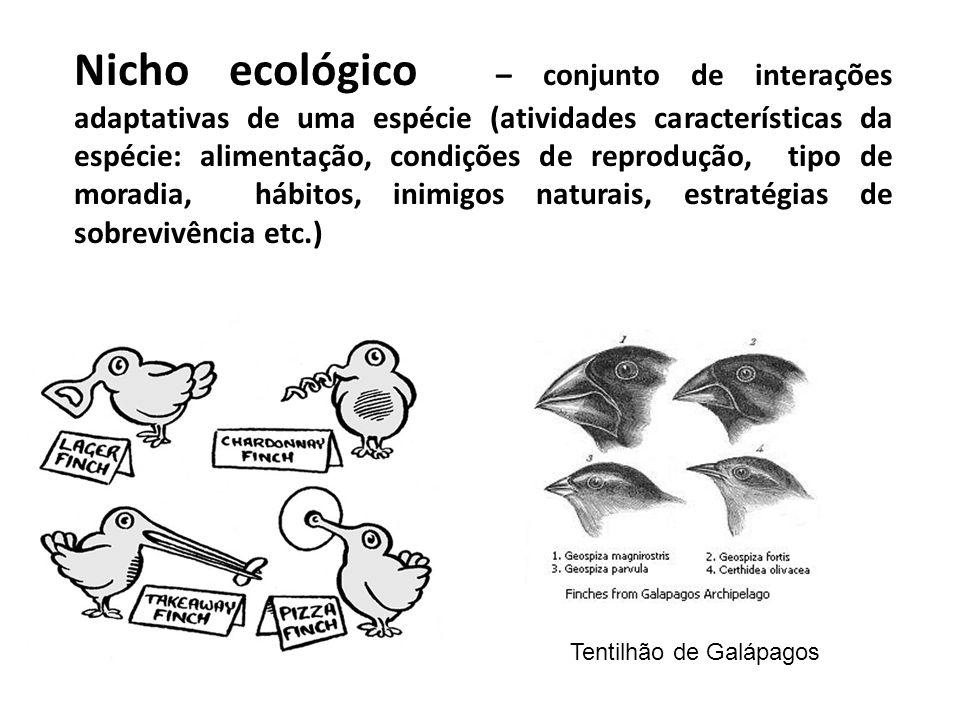 Nicho ecológico – conjunto de interações adaptativas de uma espécie (atividades características da espécie: alimentação, condições de reprodução, tipo