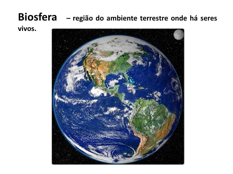 Biosfera – região do ambiente terrestre onde há seres vivos.