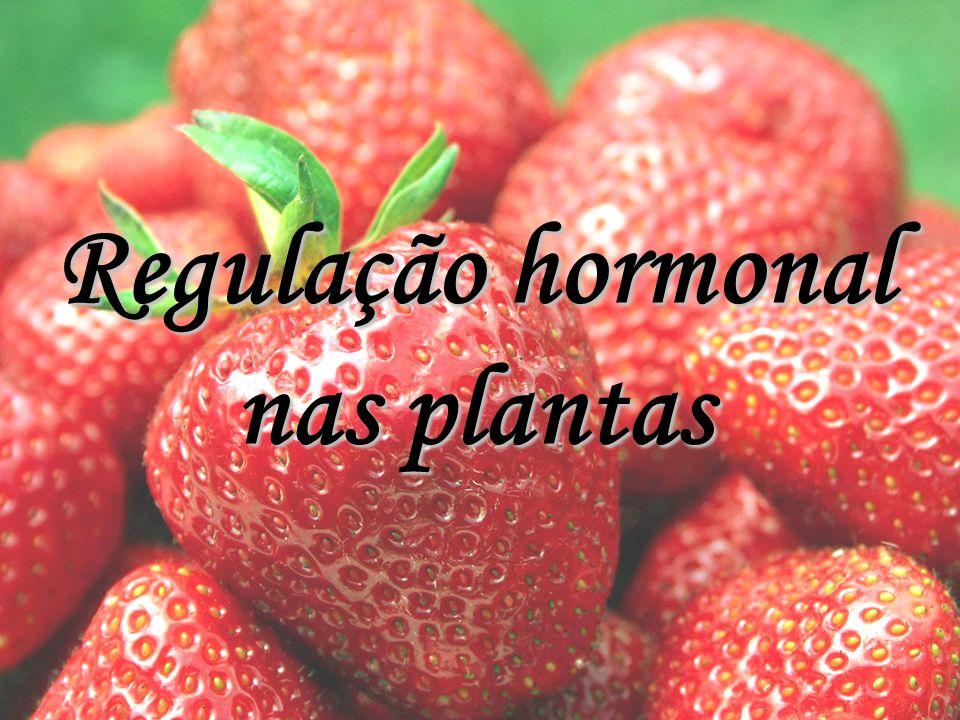 Regulação hormonal nas plantas