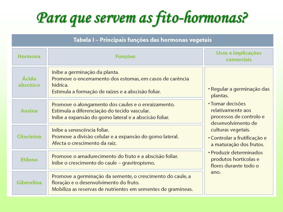 Para que servem as fito-hormonas?