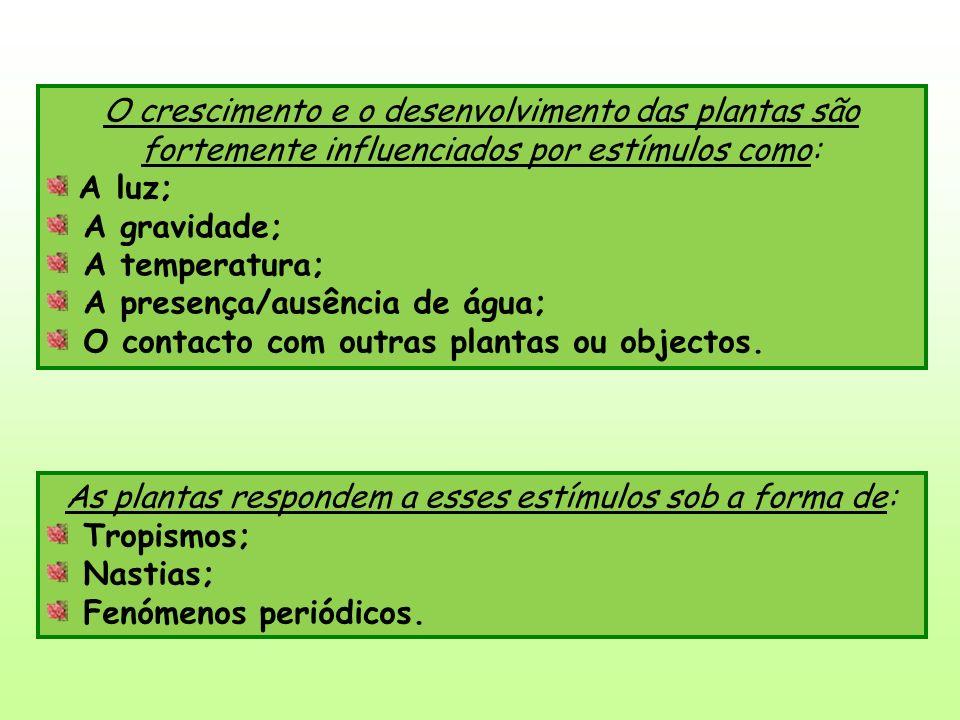 As plantas respondem a esses estímulos sob a forma de: Tropismos; Nastias; Fenómenos periódicos.
