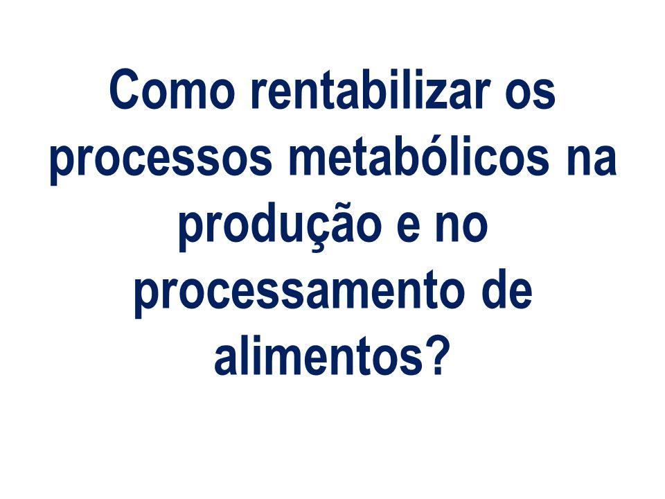Como rentabilizar os processos metabólicos na produção e no processamento de alimentos?