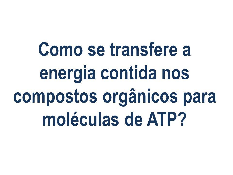 Como se transfere a energia contida nos compostos orgânicos para moléculas de ATP?