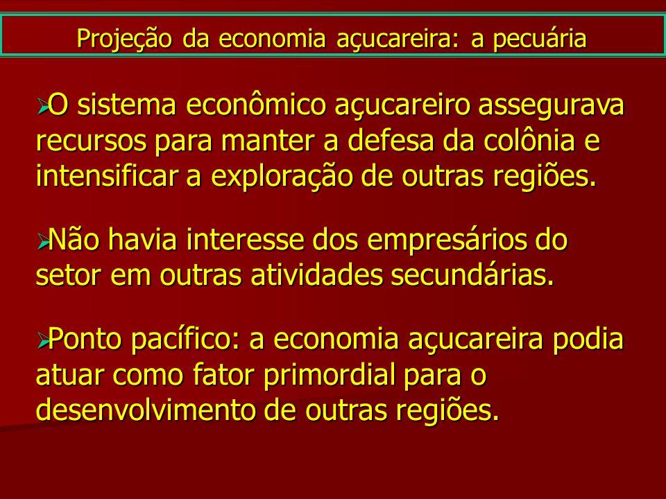 O sistema econômico açucareiro assegurava recursos para manter a defesa da colônia e intensificar a exploração de outras regiões. O sistema econômico