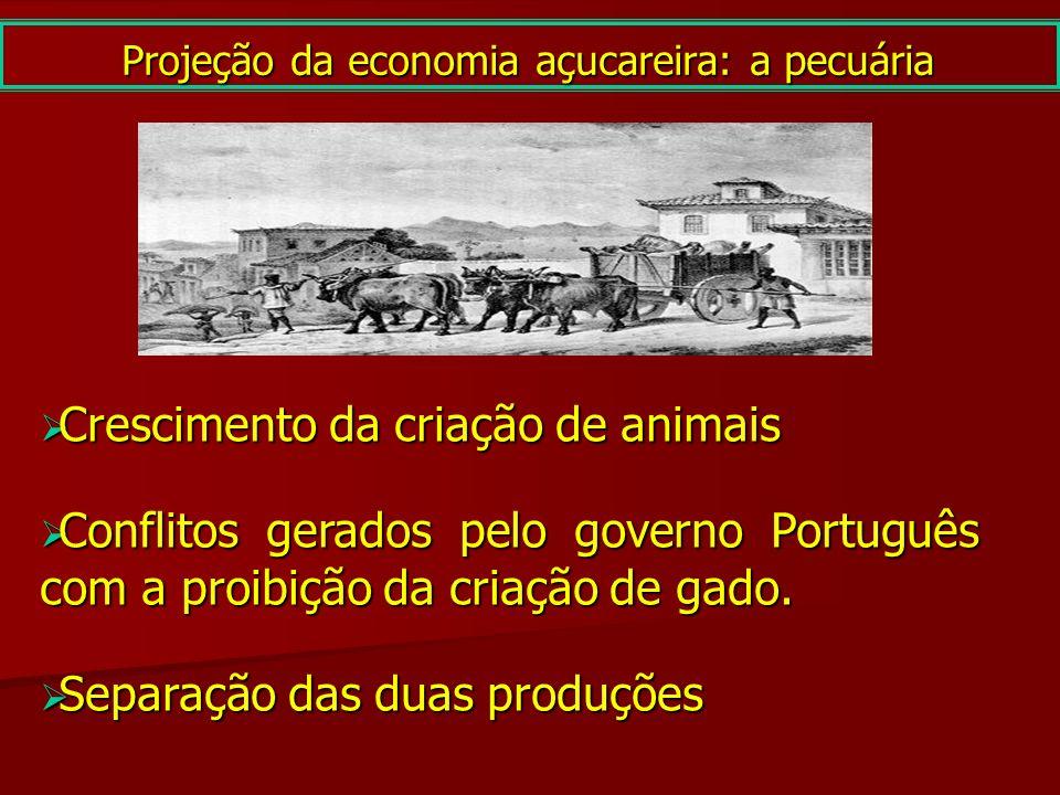 Projeção da economia açucareira: a pecuária Crescimento da criação de animais Crescimento da criação de animais Conflitos gerados pelo governo Portugu