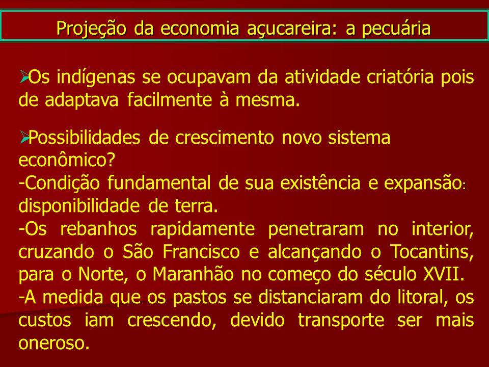 Projeção da economia açucareira: a pecuária Os indígenas se ocupavam da atividade criatória pois de adaptava facilmente à mesma. Possibilidades de cre