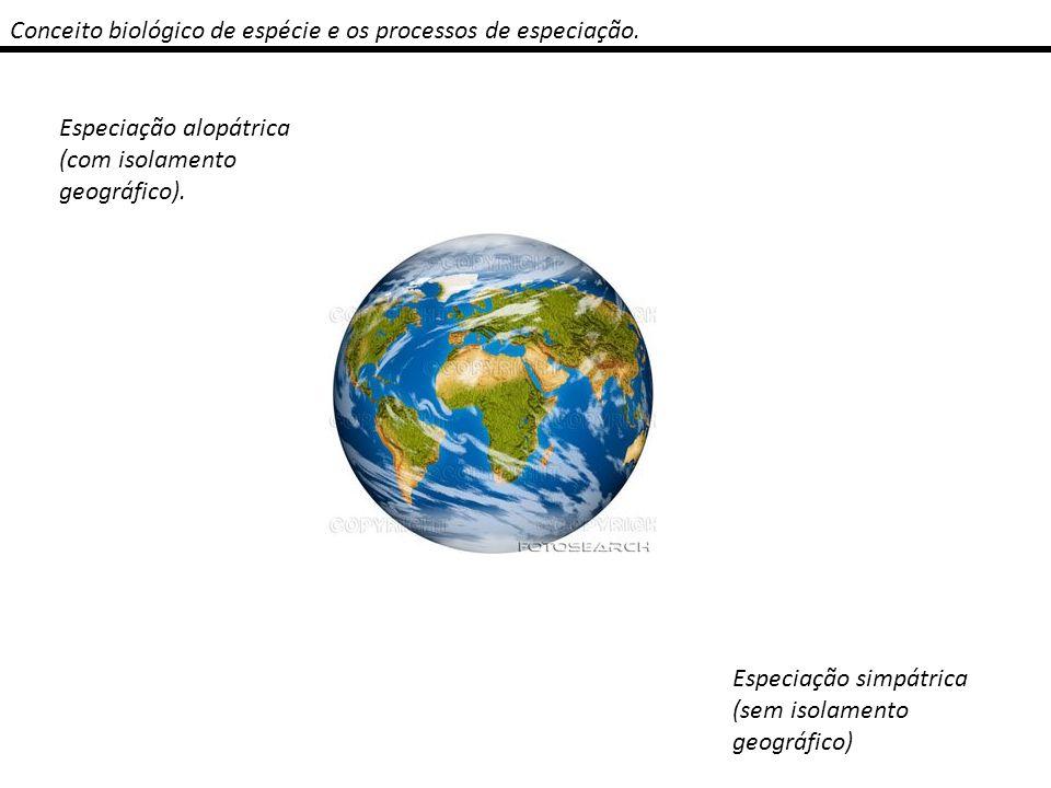 Conceito biológico de espécie e os processos de especiação. Especiação alopátrica (com isolamento geográfico). Especiação simpátrica (sem isolamento g
