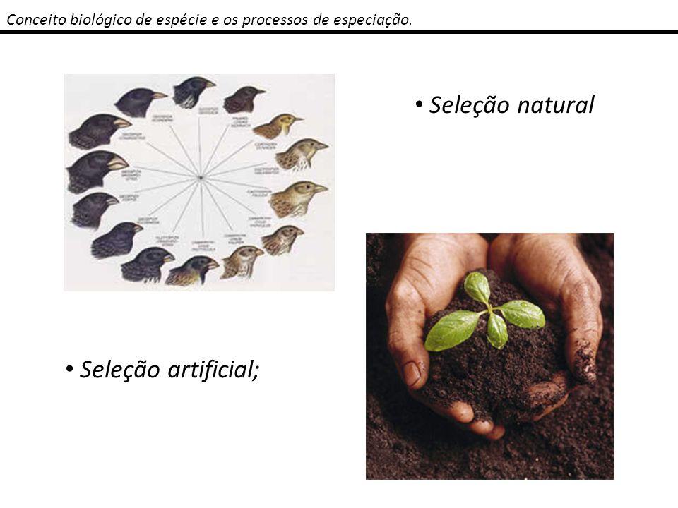 Conceito biológico de espécie e os processos de especiação. Seleção natural Seleção artificial;