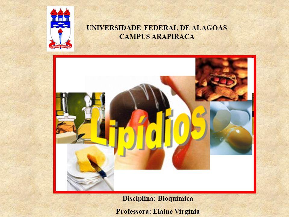 UNIVERSIDADE FEDERAL DE ALAGOAS CAMPUS ARAPIRACA Disciplina: Bioquímica Professora: Elaine Virgínia