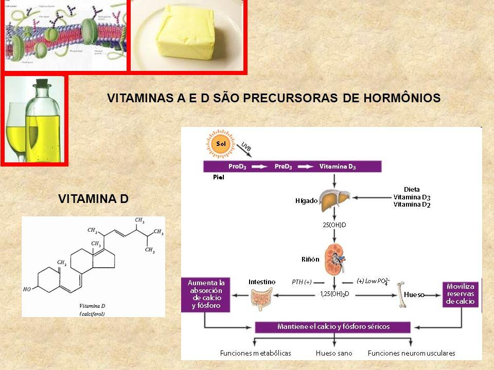 VITAMINAS A E D SÃO PRECURSORAS DE HORMÔNIOS VITAMINA D