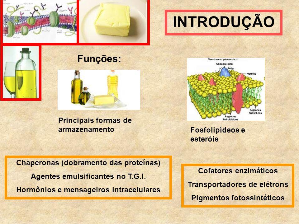 Funções: Principais formas de armazenamento Fosfolipídeos e esteróis Cofatores enzimáticos Transportadores de elétrons Pigmentos fotossintéticos Chape