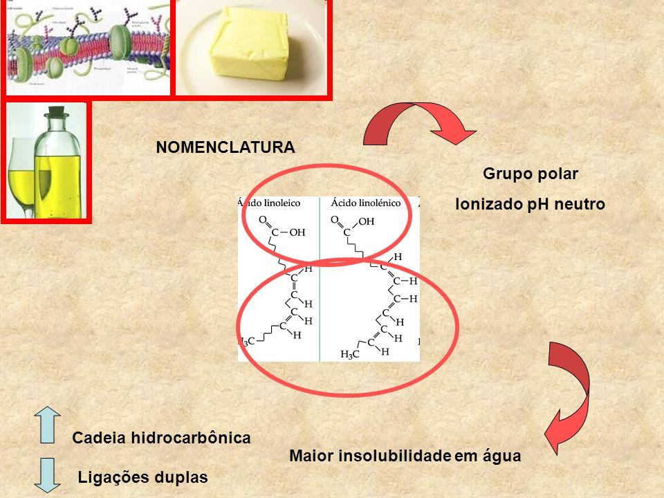 NOMENCLATURA Cadeia hidrocarbônica Ligações duplas Maior insolubilidade em água Grupo polar Ionizado pH neutro