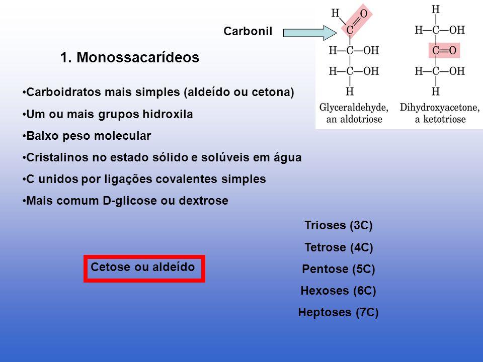 1. Monossacarídeos Carboidratos mais simples (aldeído ou cetona) Um ou mais grupos hidroxila Baixo peso molecular Cristalinos no estado sólido e solúv