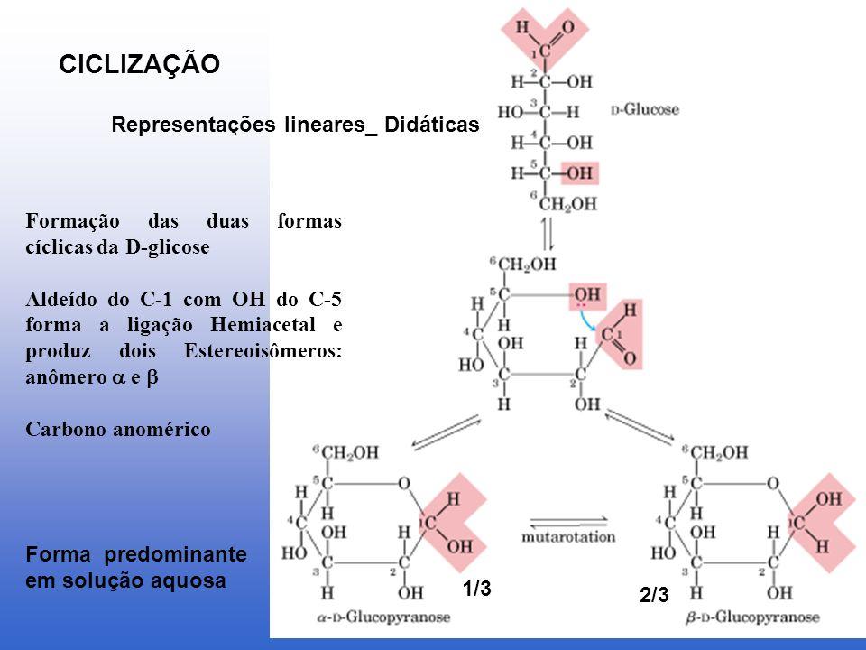 CICLIZAÇÃO Representações lineares_ Didáticas Formação das duas formas cíclicas da D-glicose Aldeído do C-1 com OH do C-5 forma a ligação Hemiacetal e