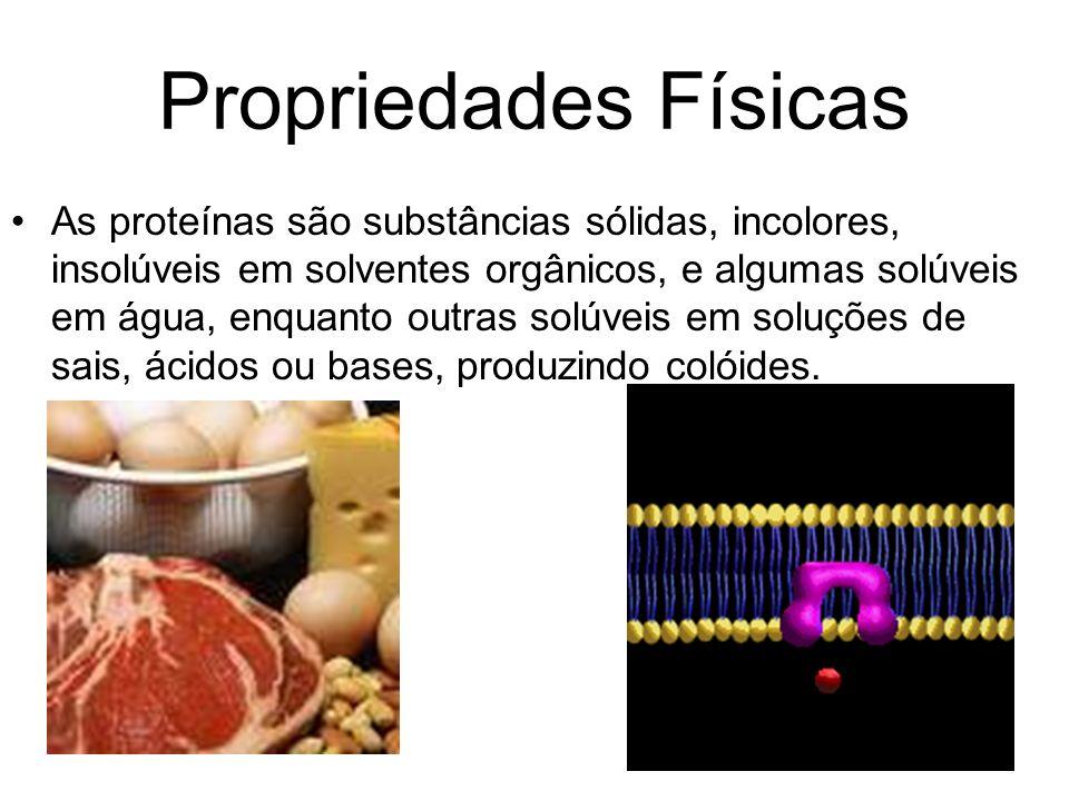 Propriedades Físicas As proteínas são substâncias sólidas, incolores, insolúveis em solventes orgânicos, e algumas solúveis em água, enquanto outras s