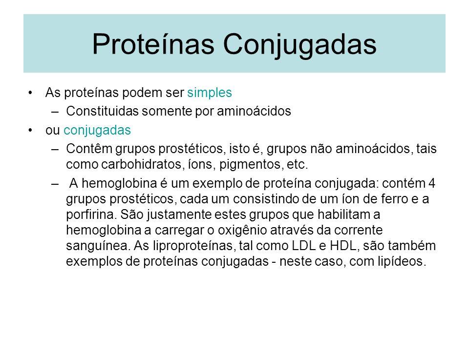 Proteínas Conjugadas As proteínas podem ser simples –Constituidas somente por aminoácidos ou conjugadas –Contêm grupos prostéticos, isto é, grupos não