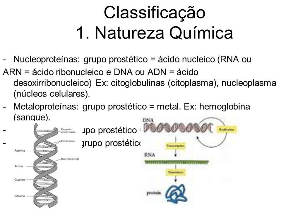 -Nucleoproteínas: grupo prostético = ácido nucleico (RNA ou ARN = ácido ribonucleico e DNA ou ADN = ácido desoxirribonucleico) Ex: citoglobulinas (cit