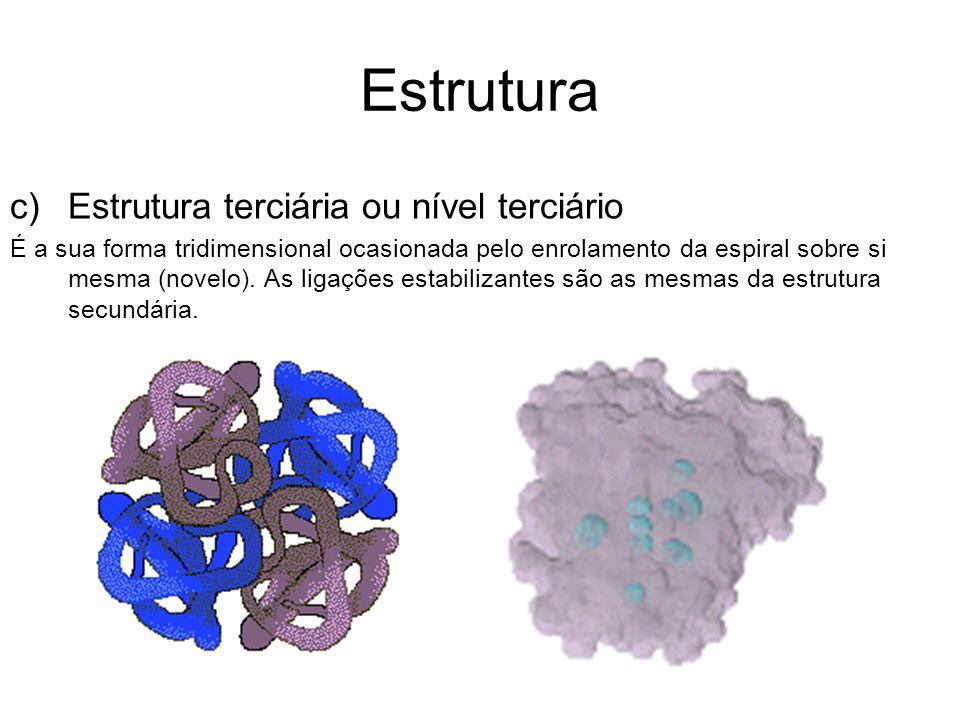 Estrutura c)Estrutura terciária ou nível terciário É a sua forma tridimensional ocasionada pelo enrolamento da espiral sobre si mesma (novelo). As lig