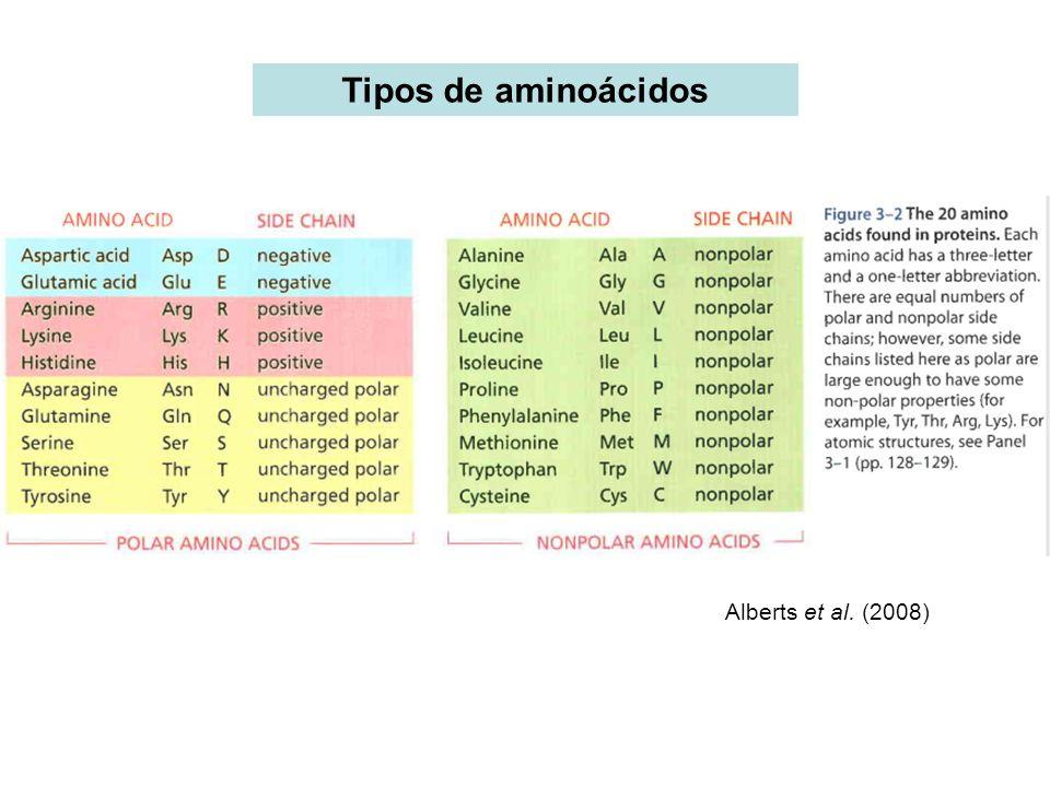 Tipos de aminoácidos Alberts et al. (2008)